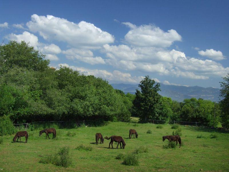 Tourisme rural Mas Casamitjana
